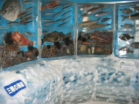 Ледяной Аквариум (Ice Aquarium)